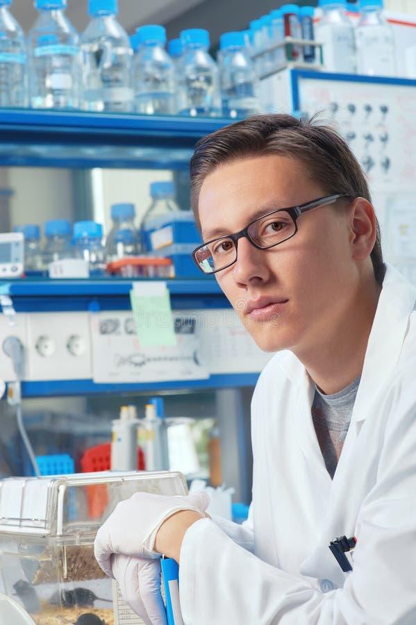Αρσενικές εργασίες επιστημόνων ή απόφοιτων φοιτητών στο εργαστήριο στοκ φωτογραφία
