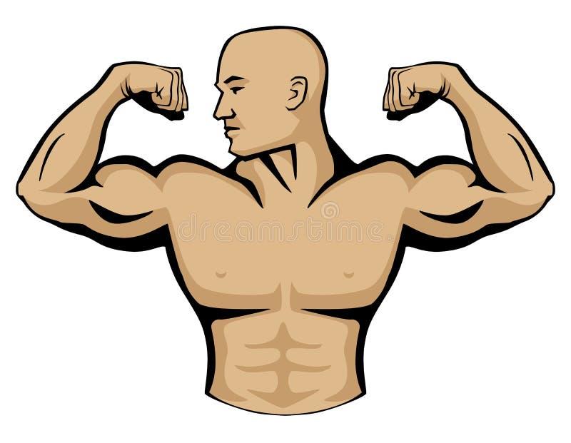 Αρσενική απεικόνιση λογότυπων οικοδόμων σώματος ελεύθερη απεικόνιση δικαιώματος