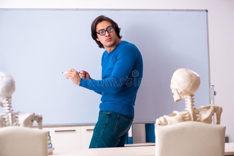 Αρσενικοί δάσκαλος και σπουδαστής σκελετών στην τάξη στοκ εικόνες