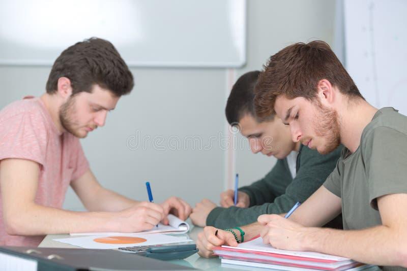 3 αρσενικοί νέοι σπουδαστές που μελετούν από κοινού στοκ εικόνες