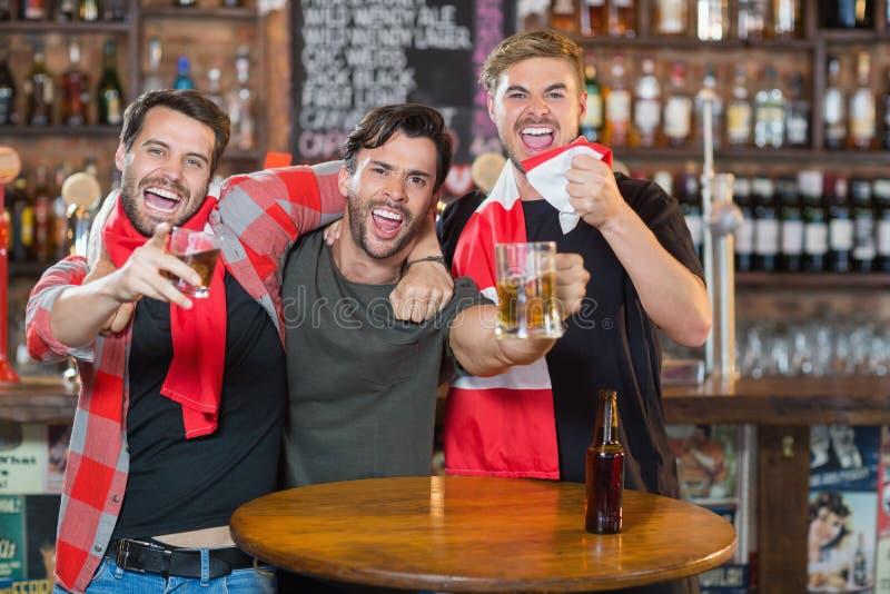 Αρσενικοί φίλοι που απολαμβάνουν στο μπαρ στοκ εικόνα με δικαίωμα ελεύθερης χρήσης