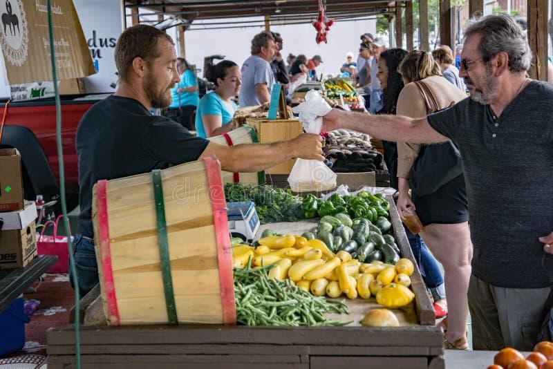 Αρσενικός αγοραστής στην αγορά αγροτών του Σάλεμ στοκ φωτογραφία