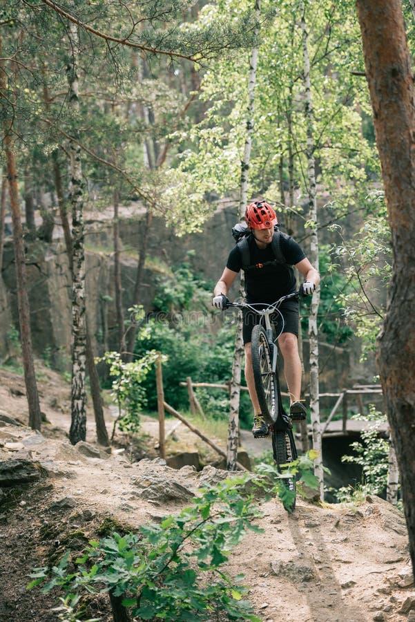αρσενικός ακραίος ποδηλάτης στην προστατευτική εξισορρόπηση κρανών στην πίσω ρόδα του ποδηλάτου βουνών στοκ φωτογραφία με δικαίωμα ελεύθερης χρήσης