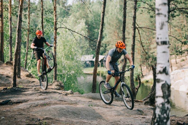 αρσενικός ακραίος ποδηλάτης στην προστατευτική εξισορρόπηση κρανών στην πίσω ρόδα του ποδηλάτου βουνών η οδήγηση φίλων του στοκ εικόνες