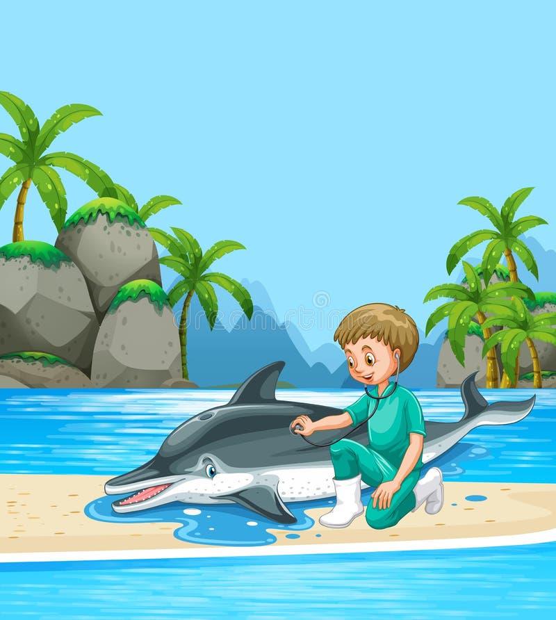 Αρσενικός κτηνίατρος που εξετάζει το δελφίνι στην παραλία ελεύθερη απεικόνιση δικαιώματος