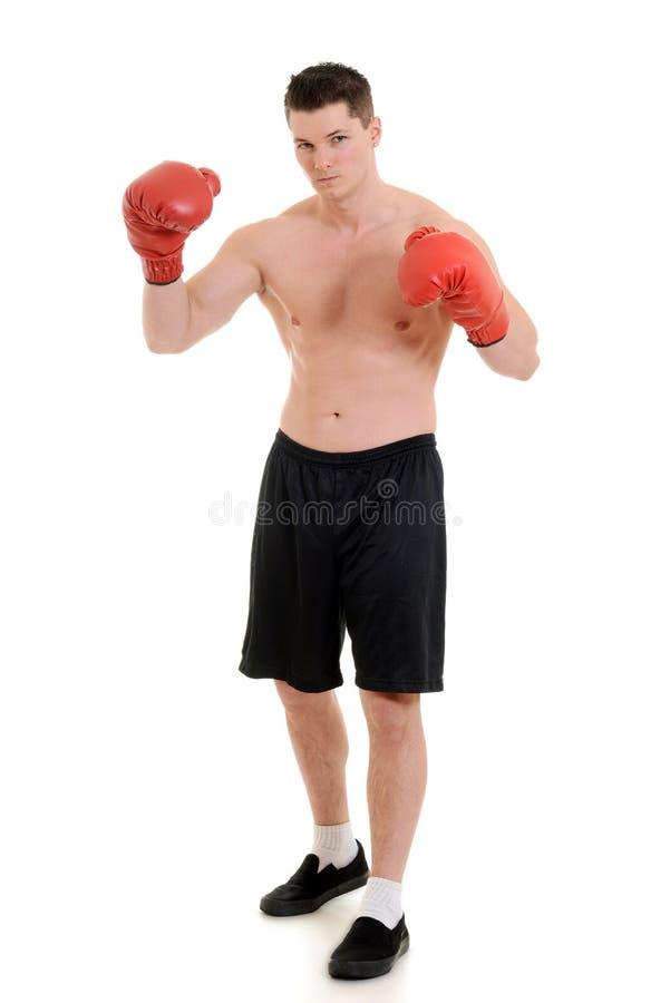 Αρσενικός μπόξερ με τα κόκκινα γάντια στοκ εικόνες