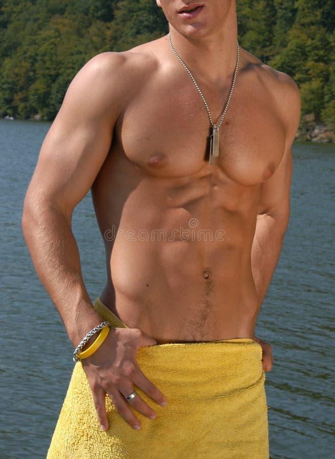 Download αρσενικός μυϊκός κορμός στοκ εικόνες. εικόνα από ικανότητα - 386126