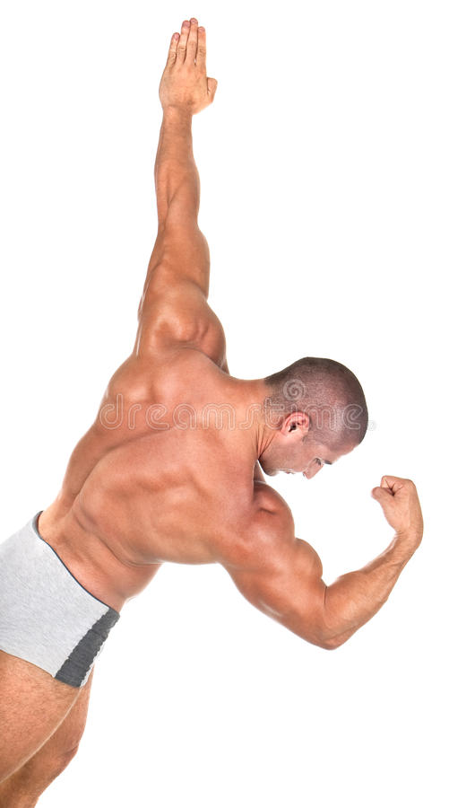 αρσενικός μυϊκός τέλειος στοκ φωτογραφία με δικαίωμα ελεύθερης χρήσης