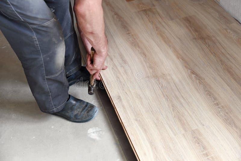 Αρσενικός ξυλουργός στοκ φωτογραφία με δικαίωμα ελεύθερης χρήσης