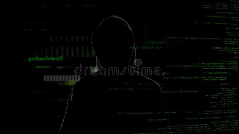 Αρσενικός χάκερ στη μαύρη εμπιστευτική πληροφορία εξέτασης, cyber πρόβλημα εγκλήματος στοκ φωτογραφία με δικαίωμα ελεύθερης χρήσης