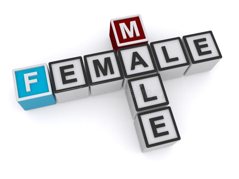 Αρσενικό και θηλυκό ελεύθερη απεικόνιση δικαιώματος
