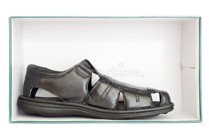 Αρσενικό καφετί παπούτσι δέρματος μέσα σε ένα κιβώτιο στοκ εικόνες