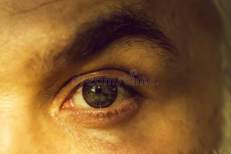 Αρσενικό μάτι με το ριγωτό φακό στοκ εικόνες