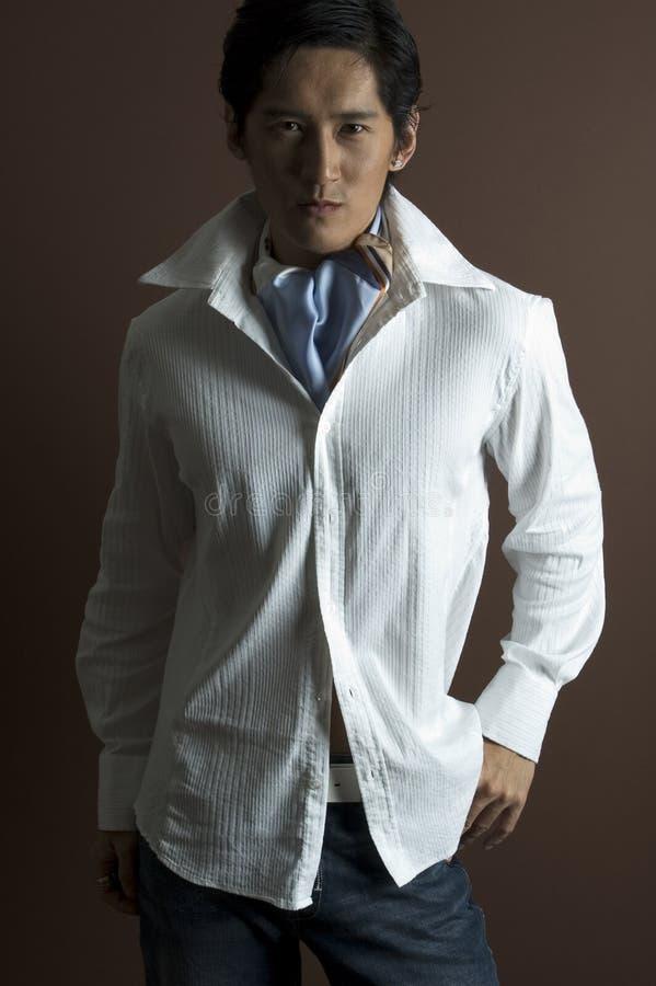 Download αρσενικό μοντέλο 14 στοκ εικόνες. εικόνα από αρσενικό, κινεζικά - 112480
