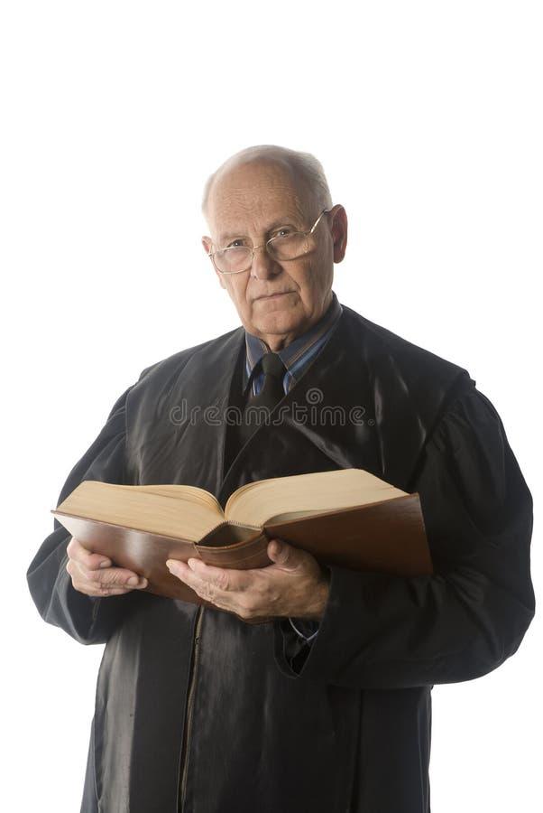 αρσενικό πορτρέτο δικαστ στοκ εικόνα