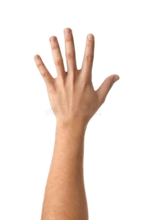 Αρσενικό χέρι στο άσπρο υπόβαθρο στοκ εικόνες