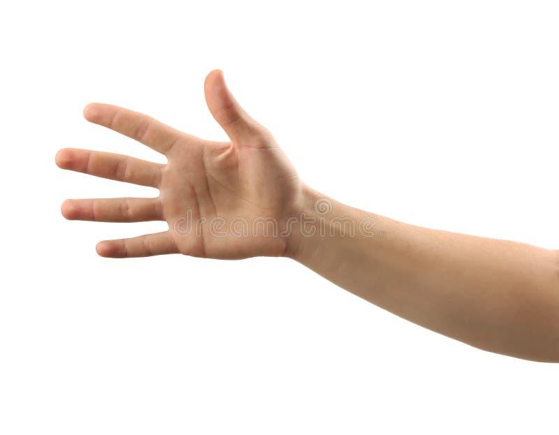 Αρσενικό χέρι στο άσπρο υπόβαθρο στοκ εικόνα