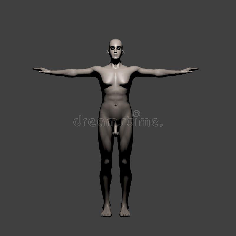 αρσενικό ελεύθερη απεικόνιση δικαιώματος