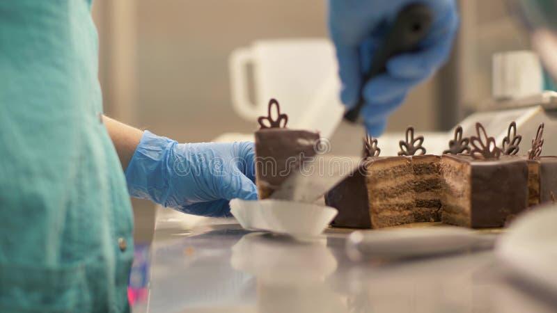 Αρτοποιός αρχιμαγείρων που βάζει το κέικ σοκολάτας κομματιού στην πετσέτα στο κατάστημα καραμελών κοντά επάνω στοκ φωτογραφία με δικαίωμα ελεύθερης χρήσης