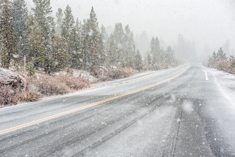 Αρχή χιονοθυελλών στο εθνικό πάρκο Yosemite Υγρός χιονώδης δρόμος στοκ φωτογραφία με δικαίωμα ελεύθερης χρήσης