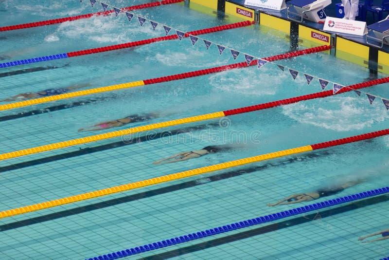 Αρχίστε να κολυμπάτε των γυναικών αθλητών στοκ εικόνες με δικαίωμα ελεύθερης χρήσης