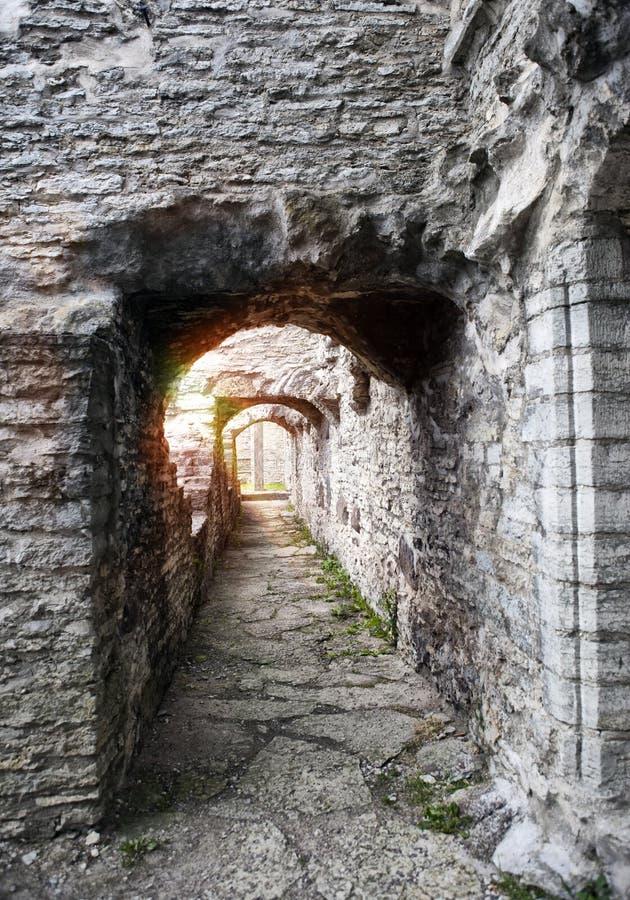 Αρχαία μονή του ST Brigitta 1436 έτος στην περιοχή Pirita, του Ταλίν, Εσθονία στοκ φωτογραφίες με δικαίωμα ελεύθερης χρήσης