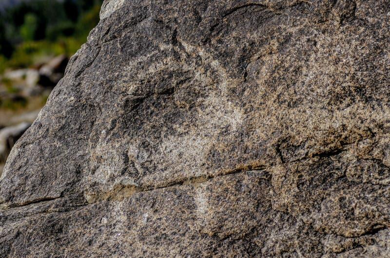 Αρχαία περιοχή με ιστορικά petroglyphs στο Κιργιστάν στοκ εικόνες