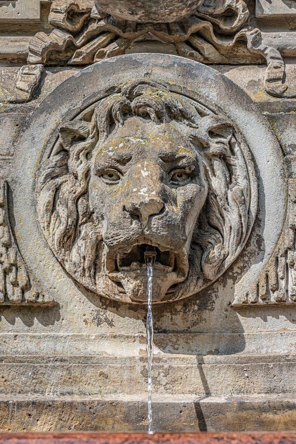 Αρχαία πηγή με ένα επικεφαλής και κρύο καθαρό νερό λιονταριών, Magdeburg, Γερμανία στοκ φωτογραφίες με δικαίωμα ελεύθερης χρήσης