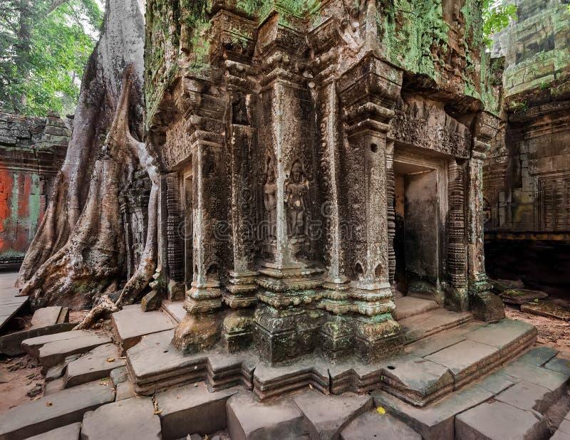 Αρχαία Khmer αρχιτεκτονική Ο ναός TA Prohm σε Angkor, Siem συγκεντρώνει, Καμπότζη στοκ εικόνες με δικαίωμα ελεύθερης χρήσης