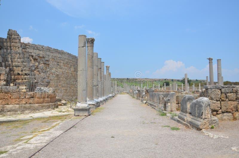Αρχαίος Έλληνας Perge Antalya, μεταξύ των στηλών, colosseum στοκ εικόνα