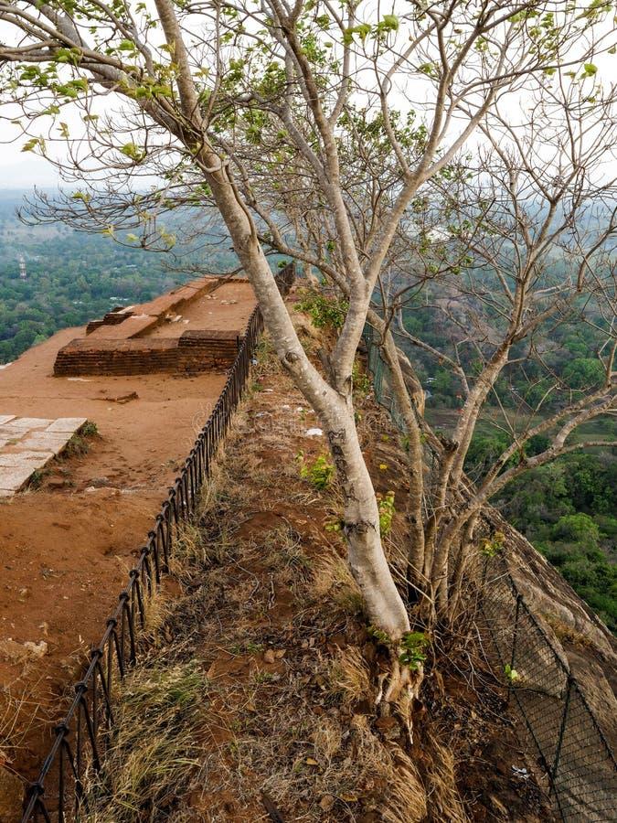 Αρχαίος βράχος Sigiriya στη Σρι Λάνκα στοκ φωτογραφίες με δικαίωμα ελεύθερης χρήσης