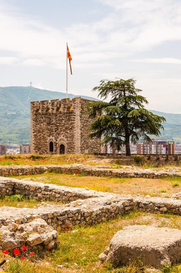 Αρχαίος πύργος πετρών ως μέρος του αρχαίου φρουρίου με την ανάπτυξη των ανθίζοντας κόκκινων κοινών παπαρουνών στο πρώτο πλάνο και στοκ εικόνα