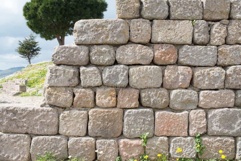 Αρχαίος τοίχος πετρών με το υπόβαθρο δέντρων στοκ εικόνες