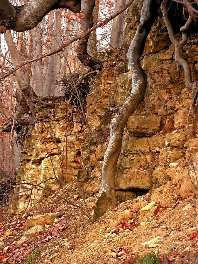 αρχαίος τοίχος στοκ εικόνα