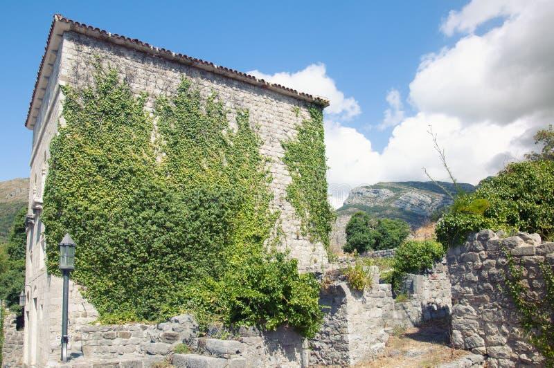 Αρχαίο κτήριο στον παλαιό φραγμό φρουρίων, Μαυροβούνιο Ανάπτυξη του κισσού πέρα από τους τουβλότοιχους o στοκ φωτογραφίες