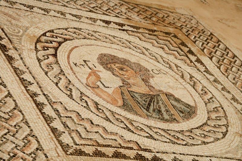 αρχαίο μωσαϊκό της Κύπρου curio στοκ εικόνες με δικαίωμα ελεύθερης χρήσης