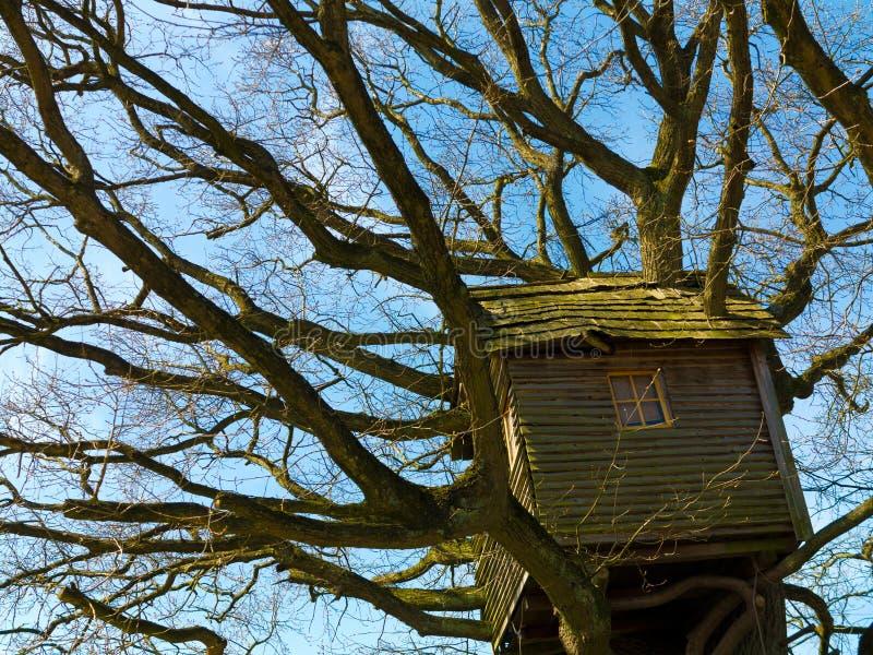 Αρχαίο νοσταλγικό ξεπερασμένο ξύλινο treehouse στοκ εικόνες