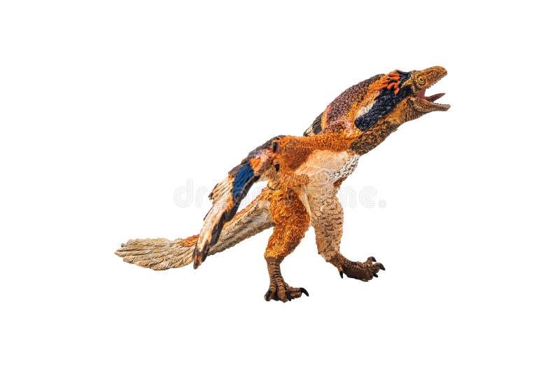 Αρχαιοπτέρυγος, δεινόσαυρος στο άσπρο υπόβαθρο στοκ φωτογραφία με δικαίωμα ελεύθερης χρήσης