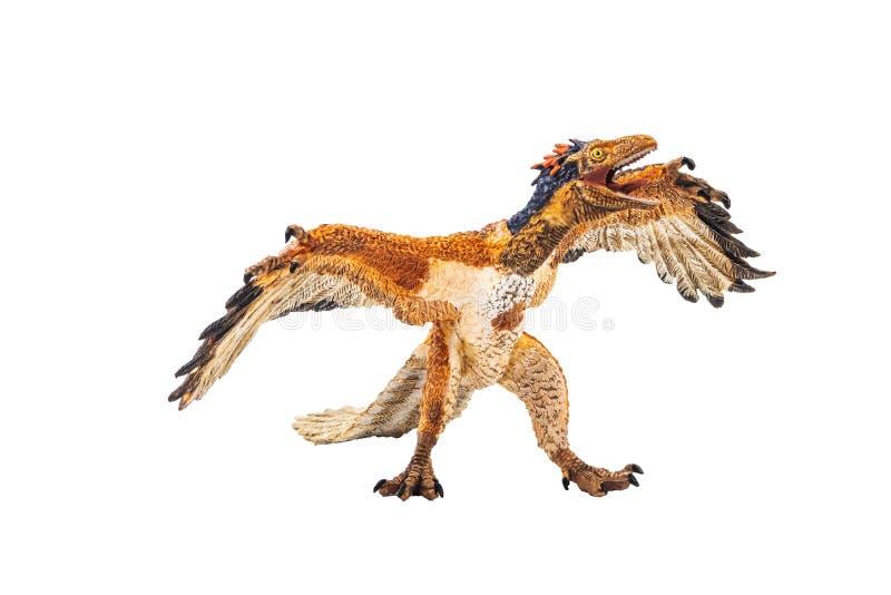 Αρχαιοπτέρυγος, δεινόσαυρος στο άσπρο υπόβαθρο στοκ φωτογραφίες