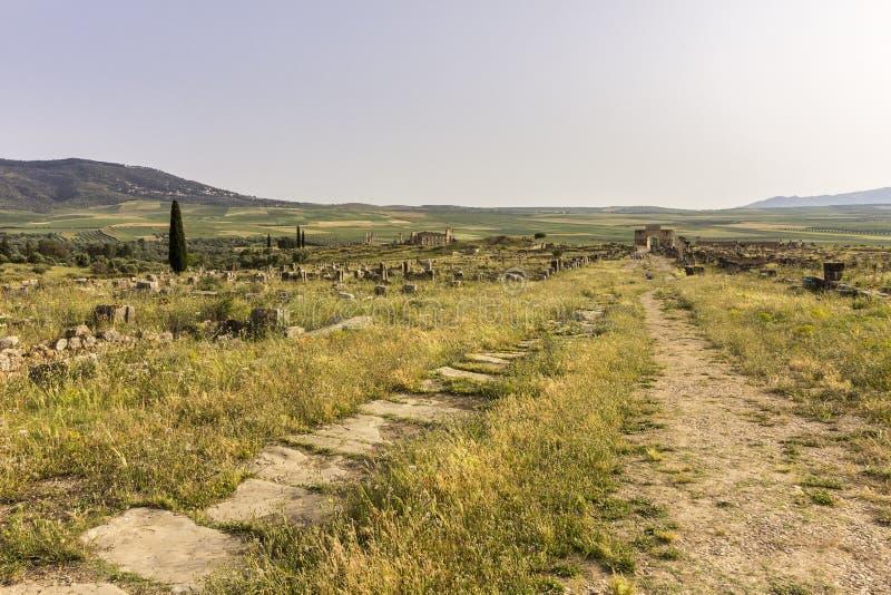 Αρχαιολογική περιοχή Volubilis, αρχαία ρωμαϊκή πόλη αυτοκρατοριών, Μαρόκο στοκ φωτογραφία με δικαίωμα ελεύθερης χρήσης