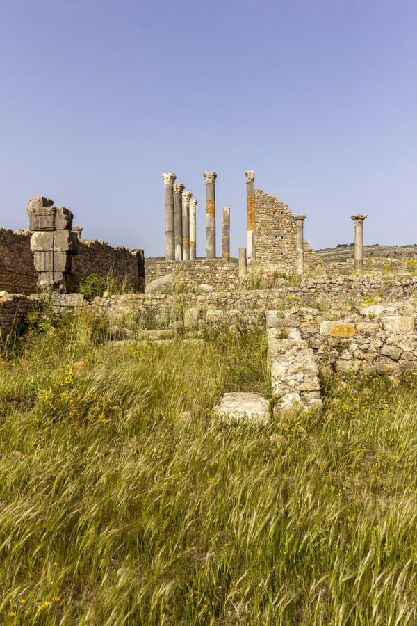 Αρχαιολογική περιοχή Volubilis, αρχαία ρωμαϊκή πόλη αυτοκρατοριών στοκ φωτογραφία με δικαίωμα ελεύθερης χρήσης