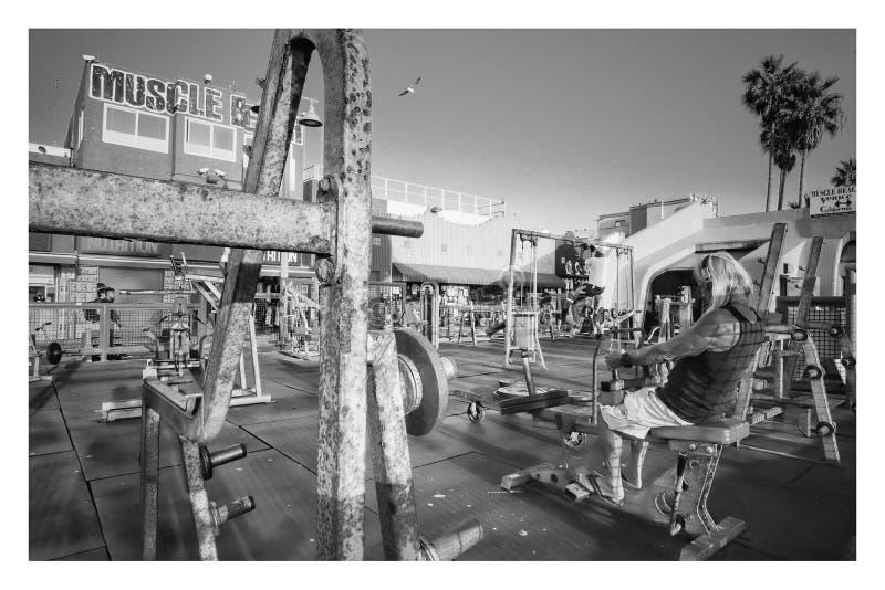 Αρχική γυμναστική Golds παραλιών μυών στην παραλία της Βενετίας Καλιφόρνια στοκ εικόνα με δικαίωμα ελεύθερης χρήσης