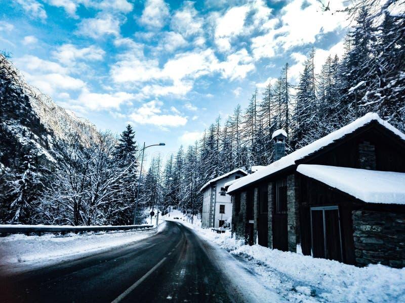 Αρχικός χειμώνας στοκ εικόνα με δικαίωμα ελεύθερης χρήσης