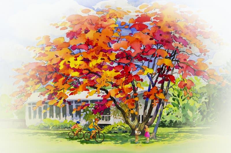Αρχικό κόκκινο πορτοκαλί χρώμα τοπίων watercolor ζωγραφικής των λουλουδιών peacock διανυσματική απεικόνιση