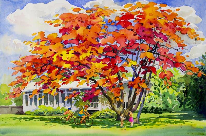 Αρχικό κόκκινο πορτοκαλί χρώμα τοπίων watercolor ζωγραφικής των λουλουδιών peacock ελεύθερη απεικόνιση δικαιώματος