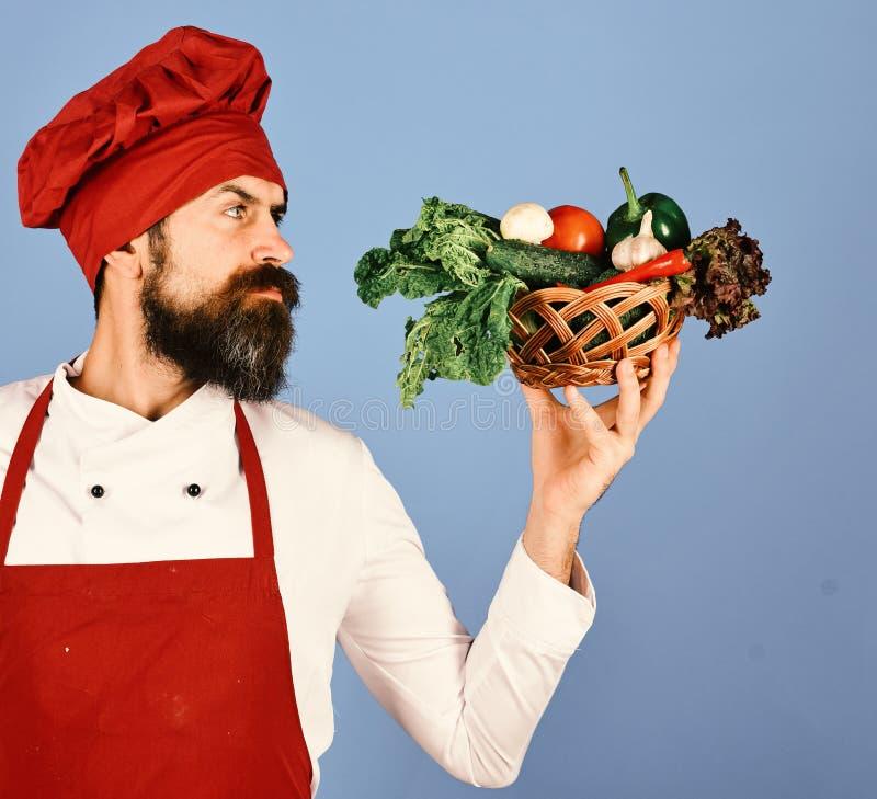 Αρχιμάγειρας που κρατά ένα σύνολο κύπελλων των ακατέργαστων φρέσκων οργανικών λαχανικών στοκ εικόνα με δικαίωμα ελεύθερης χρήσης