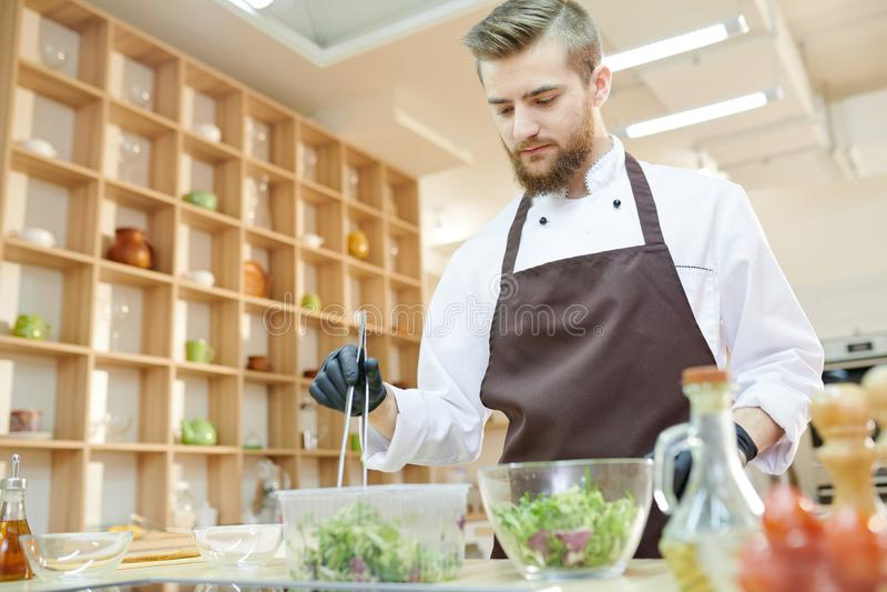 Αρχιμάγειρας που προετοιμάζει τη σαλάτα στο εστιατόριο στοκ φωτογραφία με δικαίωμα ελεύθερης χρήσης