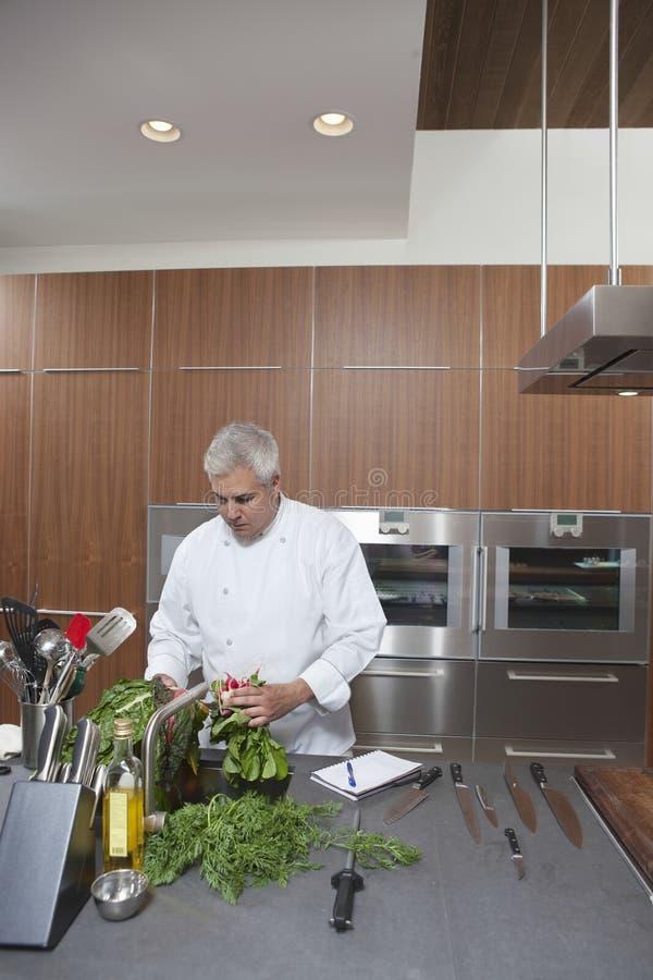 Αρχιμάγειρας που πλένει τα φυλλώδη λαχανικά στην εμπορική κουζίνα στοκ εικόνα με δικαίωμα ελεύθερης χρήσης