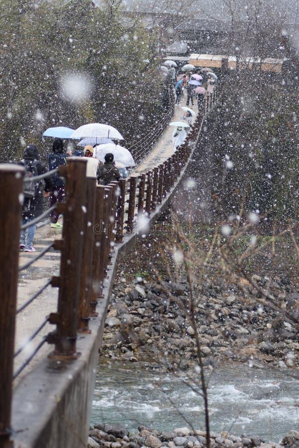 Αρχιτεκτονική Ιαπωνία σπιτιών βουνών Shirakawago δέντρων ποταμών γεφυρών χειμερινής άνοιξης χιονιού στοκ εικόνες