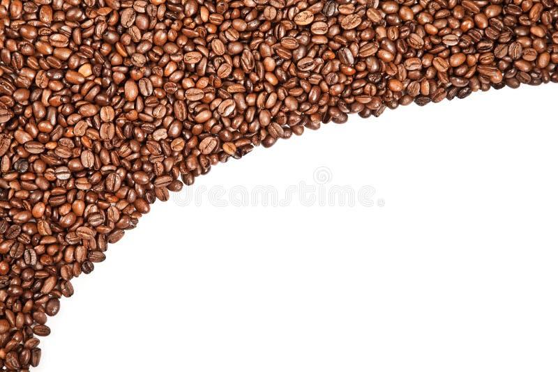 αρωματικό λευκό καφέ φασ&omic στοκ εικόνα με δικαίωμα ελεύθερης χρήσης